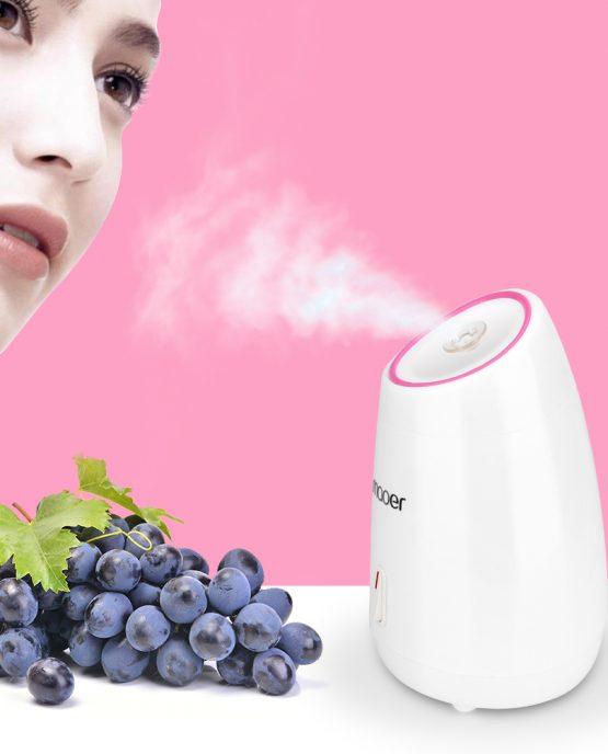 Fruit Facial Steamer